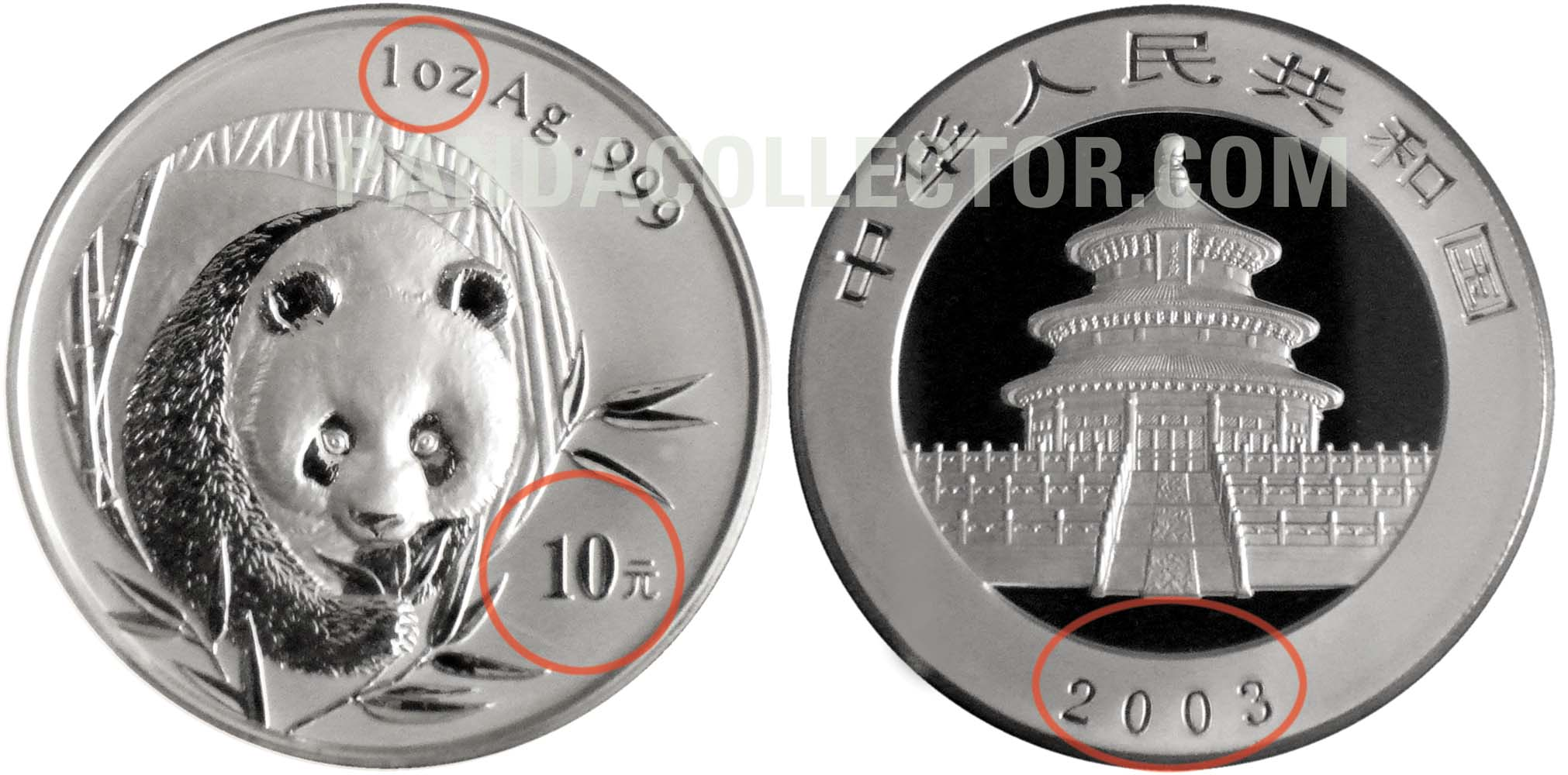 2003 Genuine 1 oz. Silver Panda Example